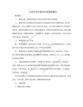 大学大学生宿舍文化调查报告.doc