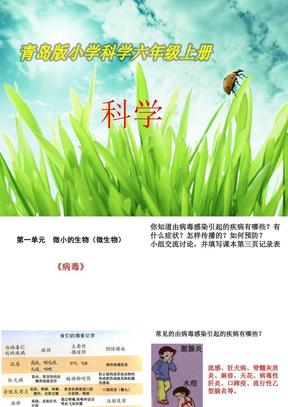 青岛版小学科学六年级上科学课件全-(1).ppt