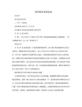 党小组会会议记录 .doc