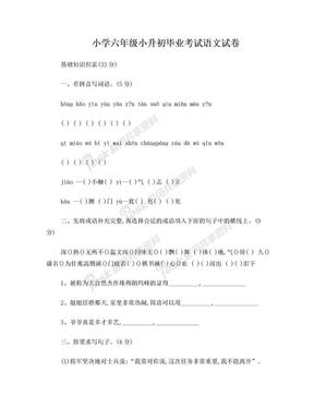 小升初语文测试卷及答案.doc