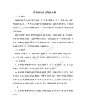临湖镇总体规划任务书.doc