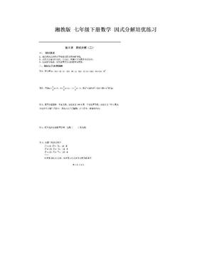 湘教版 七年级下册数学 因式分解培优练习.doc