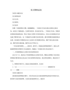 实习律师总结.doc