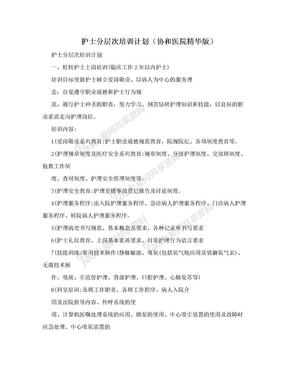 护士分层次培训计划(协和医院精华版).doc