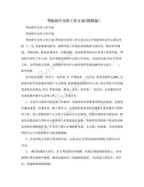 驾校招生宣传工作计划(精简版).doc