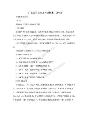 广东省罗定市龙湾镇榕木灯盏铁矿.doc