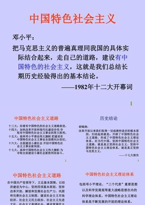 建设中国特色社会主义政治.ppt