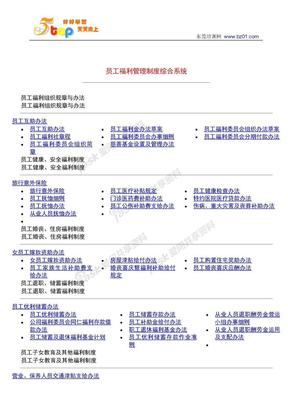 员工福利管理制度综合系统.doc