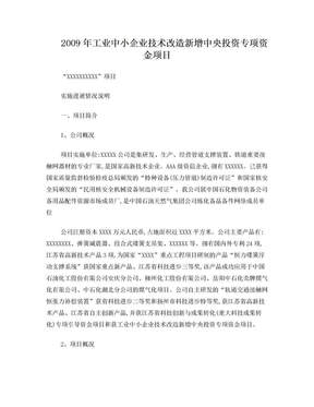 XXX项目实施进展情况说明.doc