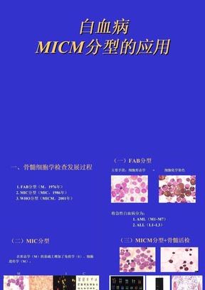 白血病MICM分型的应用.ppt