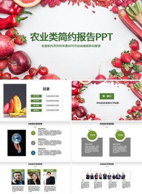 农业类简约报告PPT.pptx