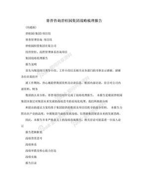 赛普咨询碧桂园集团战略梳理报告.doc