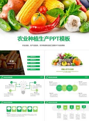 农业种植生产PPT模板.pptx