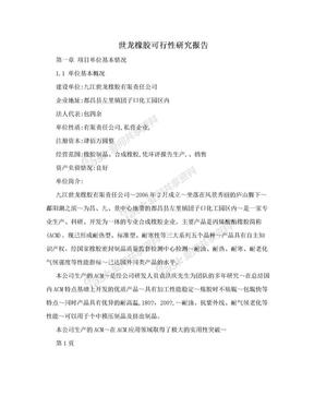 世龙橡胶可行性研究报告.doc
