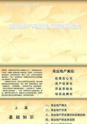 培训:商业地产开发技术和盈利模式20120524.ppt