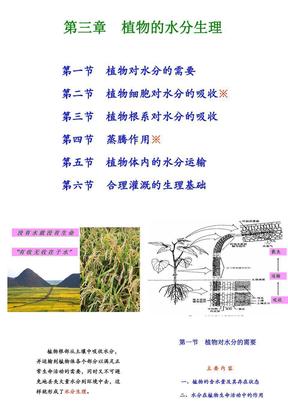 第三章++植物的水分生理.ppt
