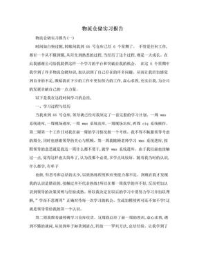 物流仓储实习报告.doc