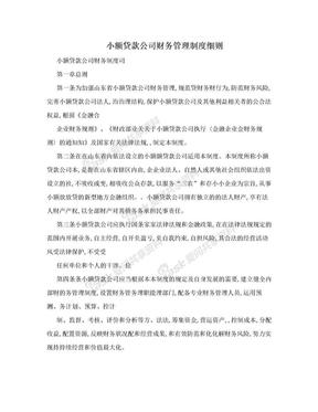 小额贷款公司财务管理制度细则.doc