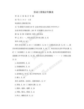 劳动工资统计年报表.doc