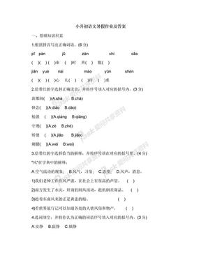 小升初语文暑假作业及答案.docx