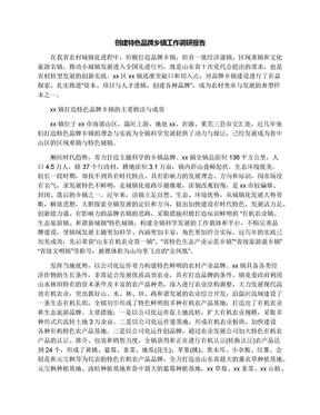创建特色品牌乡镇工作调研报告.docx