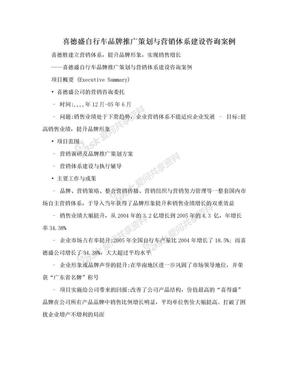 喜德盛自行车品牌推广策划与营销体系建设咨询案例.doc