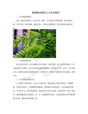 植物物语解析之文竹的物语.doc