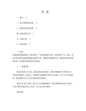 易县柿子网络营销策划方案.doc