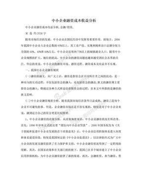 中小企业融资成本收益分析.doc