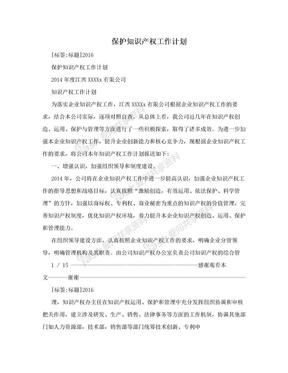 保护知识产权工作计划.doc