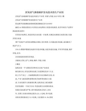 厌氧沼气掺烧锅炉发电技术的生产应用.doc