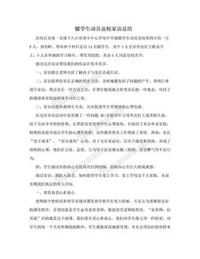 辍学生动员返校家访总结.doc