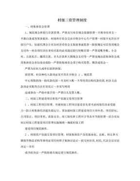 村级三资管理制度.doc