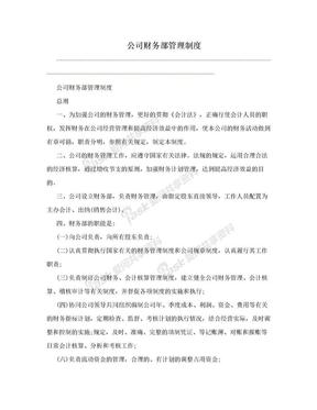 公司财务部管理制度.doc