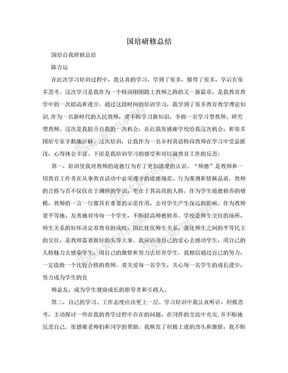 国培研修总结.doc