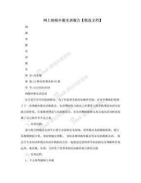 网上纳税申报实训报告【精选文档】.doc