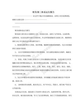 财务部三体系运行报告.doc