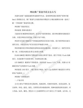 网站推广策划书范文怎么写.doc