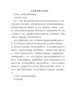 大学团支部工作总结.doc