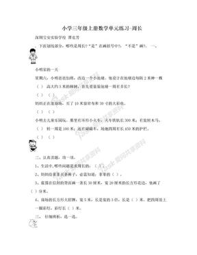 小学三年级上册数学单元练习-周长.doc