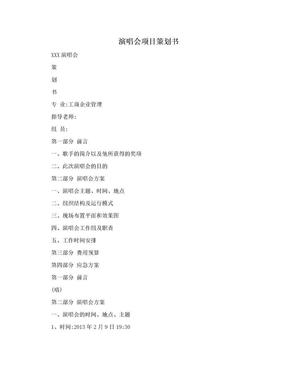 演唱会项目策划书.doc