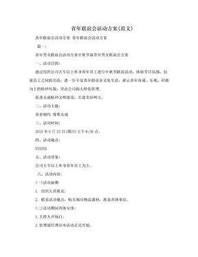 青年联谊会活动方案(范文).doc
