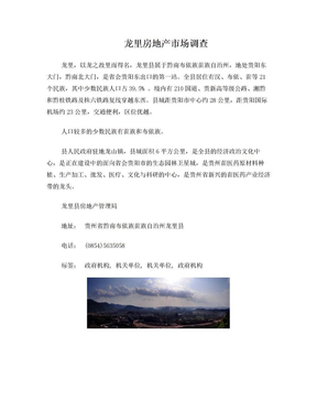 龙里房地产市场调查.doc