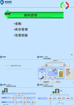 SAP-MM概述(MMPPT)_朗泽咨询.ppt