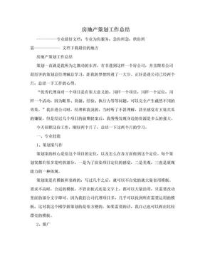 房地产策划工作总结.doc