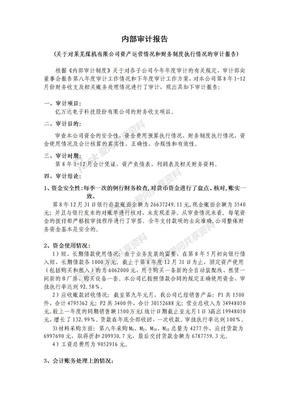 内部审计报告.doc