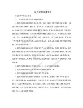民办学校会计实务.doc