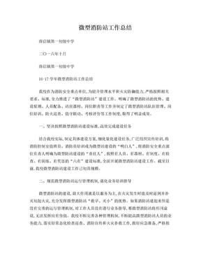 微型消防站工作总结.doc