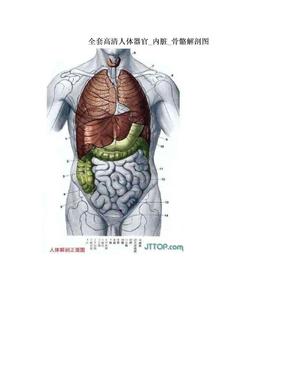 全套高清人体器官_内脏_骨骼解剖图.doc