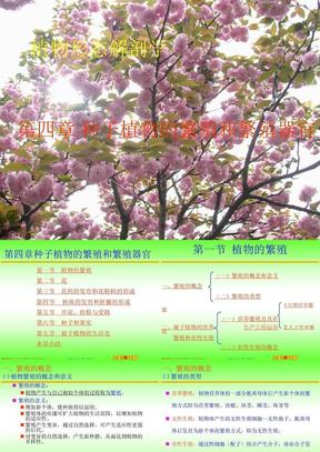 4第四章 种子植物的繁殖和繁殖器官.ppt